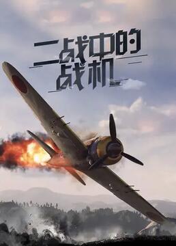 二战中的战机剧照