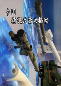 中国精锐武器大揭秘剧照