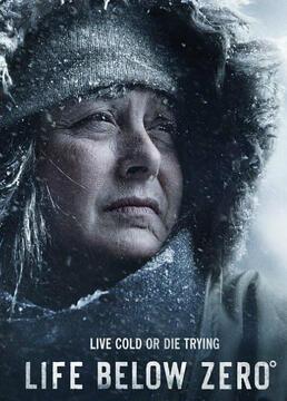 零度以下的生活消融第一季剧照