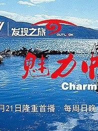 魅力文化中国