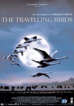 迁徙的鸟剧照