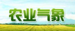 农业气象剧照