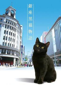 银座黑猫物语剧照