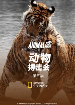 动物搏击会第三季剧照