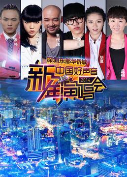 中国好声音新年演唱会剧照