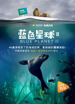 蓝色星球第二季剧照