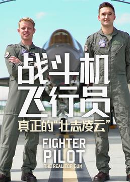 """战斗机飞行员真正的""""壮志凌云""""剧照"""