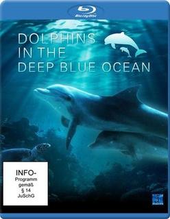 深蓝色海洋里的海豚剧照