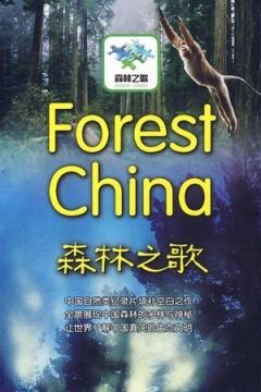 森林之歌剧照