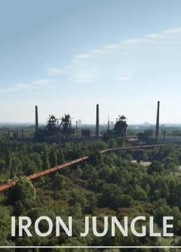 钢铁丛林剧照