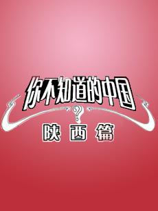 你不知道的中国陕西篇剧照