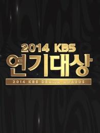 2014kbs演技大赏剧照