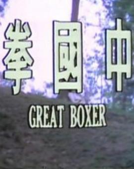 中国拳剧照