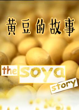 黄豆的故事剧照