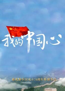 我的中国心剧照