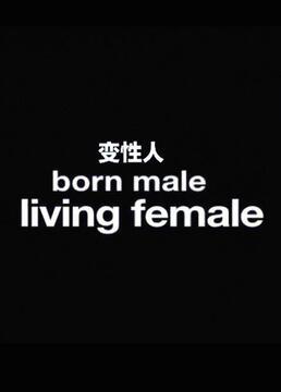 总务部长是个变性人剧照