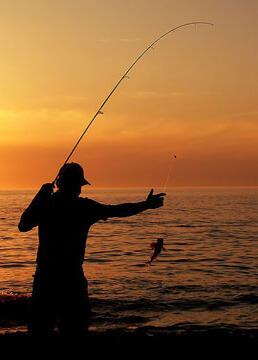 钓鱼视频剧照