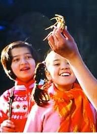 微笑的螃蟹剧照