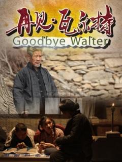 再见瓦尔特剧照