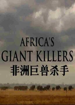 bbc自然世界非洲巨兽杀手第三十三季剧照